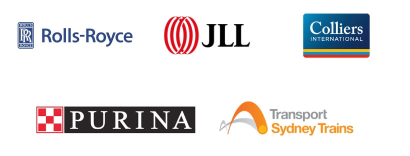 Some of Sine's current clients